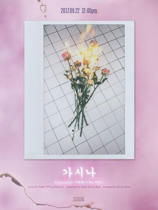 [사진]선미 공식 인스타그램